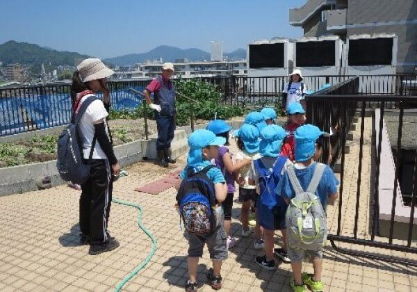 保育園の子供たちとさつま芋作り